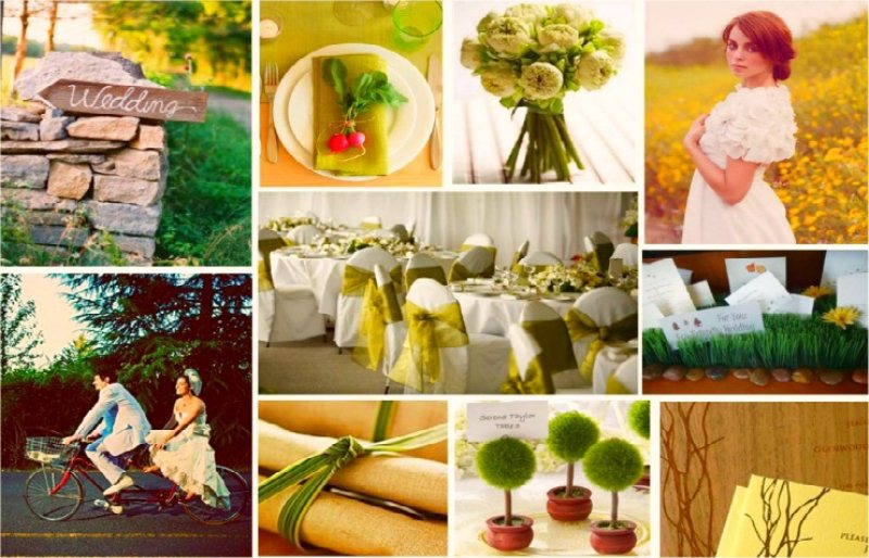 Green Weddingil matrimonio a impatto zero